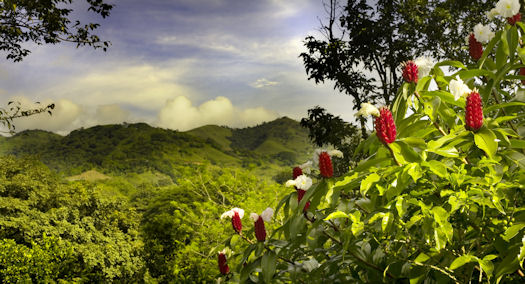 FAQs about buying property in Costa Rica and other facts